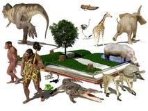 Das Buch und die Tiere Stockfoto