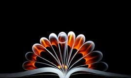 Das Buch und ein Ring Stockfotografie