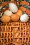 Das bunte Ei im Korb Lizenzfreies Stockbild