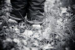 Das child& x27; s-Fuß, der auf Herbst Park geht Stockbilder