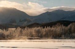 Das Chilkat Tal unter einer Bedeckung des Schnees Lizenzfreies Stockbild
