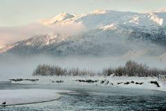 Das Chilkat Tal unter einer Bedeckung des Schnees Lizenzfreie Stockfotografie