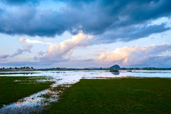 Das cloudscape und allgemeine der Seesonnenuntergang Lizenzfreies Stockbild
