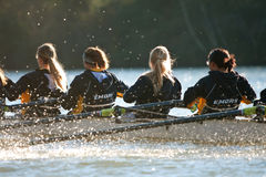 Das College-Mannschaft Team Rows Down Atlantas der Frauen Chattahoochee River stockfotografie