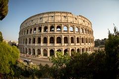 Das Colosseum in Rom Italien Stockfoto
