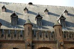 Das Dach des Gebäudes des niederländischen Parlaments Stockfoto