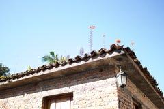 Das Dach mit dem Blumenwachsen stockbild