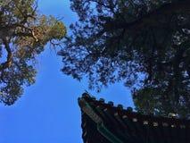 Das Dachgesims des chinesischen traditionellen Gebäudes, Peking lizenzfreie stockfotos