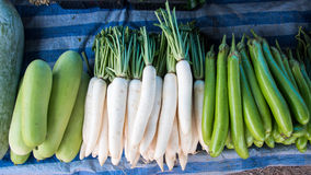 Das Daikon am Frischmarkt in Thailand lizenzfreies stockfoto