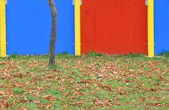 Das Detail der Herbstsaison mit den Blättern gefallen Stockbilder