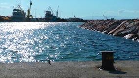Das Dock Marine und das Meer stock video footage