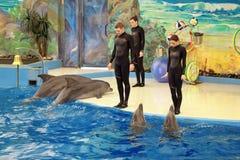 Das Dolphinarium Lizenzfreie Stockfotos