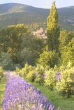 Das Dorf des Dichters Laval, Provence, Frankreich. Lizenzfreie Stockfotografie