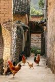 Das Dorf in Guilin, Porzellan Stockfoto