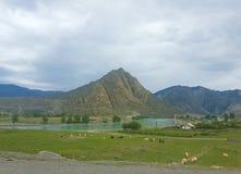Das Dorf ist in den Bergen nahe dem Fluss Lizenzfreies Stockfoto
