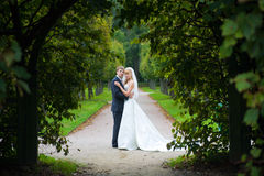 Das eben verheiratete Paar Stockbild