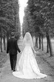 Das eben verheiratete Paar Stockbilder