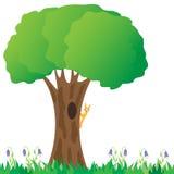 Das Eichhörnchen auf einem Baum. Lizenzfreie Stockfotos