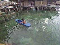 Das Einheimische des Meeres lizenzfreies stockfoto