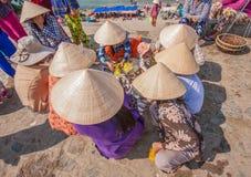 Das erstaunliche Dorf von Mui Ne, Vietnam stockfotos