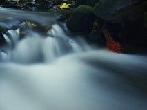 Das erste bunte Blatt vom Ahornbaum auf moosigen Steinen des Basalts in unscharfem Wasser des Gebirgsstromes. Lizenzfreies Stockfoto