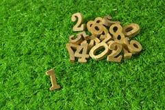 Das erste, hölzerne Zahlen auf grünem Gras Stockfotos