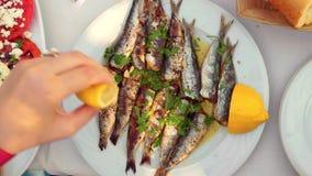 Das Essen des appetitanregenden Sardinentellers diente mit Petersilie und Zitrone stock video