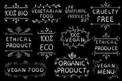 das ethische Produkt 100 strengen Vegetariers geben cruetly frei Gezeichnete Elemente der Weinlese Hand Weiße Zeilen Lizenzfreie Stockfotografie