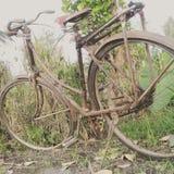 Das Fahrrad Stockbilder