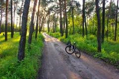 Das Fahrrad Stockfotos