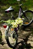 Das Fahrrad mit Blumen auf seinem Stamm Stockbilder