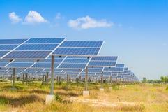Das Feld der Solarzellen Stockfotografie