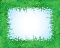 Das Feld des Grases Stockbild