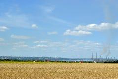 Das Feld des Weizens neben einer Stadt Lizenzfreie Stockfotos
