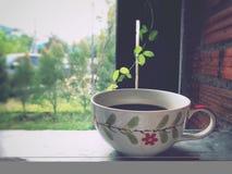 Das Fenster mit Ihrem Lieblingskaffee heraus schauen Lizenzfreies Stockbild