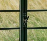 Das Fenster mit Klinke eines alten Bauernhauses nach innen Lizenzfreies Stockfoto