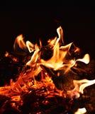Das Feuer Lizenzfreie Stockfotografie