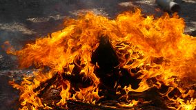 Das Feuer brennt Stücke Plastik stock video footage