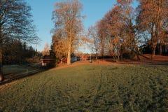 Das finnische Dorf am Frühherbstmorgen Stockbild