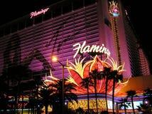 Das Flamingo-Hotel und das Kasino in Las Vegas Nevada stockfotografie