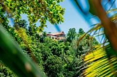 Das Foto des Hauses auf dem Berg im tropischen Wald stockfotos