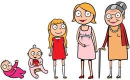 Das Frauenleben inszeniert Entwicklung Lizenzfreie Stockbilder