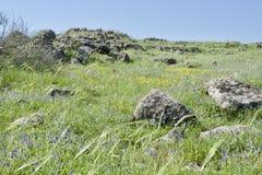 Das Galiläa im Frühjahr stockfotografie