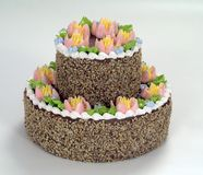 Das Gebäck, Schokoladenkuchen Stockfotografie