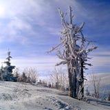 Das Geheimnis des ukrainischen Winters Stockbild