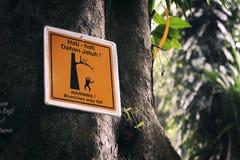 Das gelbe Zeichen auf dem Baum Lizenzfreie Stockfotos