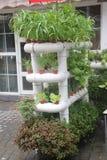 Das Gemüsegartendesign des Balkons Lizenzfreies Stockbild