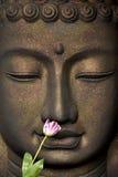 Das Gesicht von Buddha Stockfotos