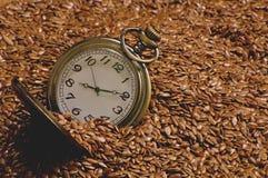 Das gesunde Lebensmittel der Zeit Lizenzfreies Stockbild