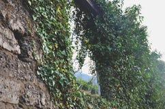Das geworfene Haus Stockbild